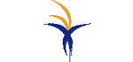 AL NASSER INVESTMENTS LLC